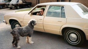 Jack Sauer and the family dog